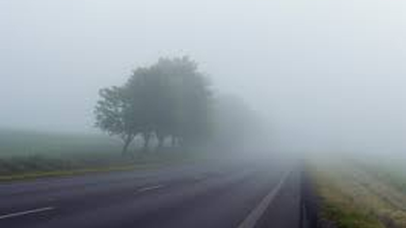 Rajkot and Mahisagar Foggy atmosphere Vehicles were disturbed