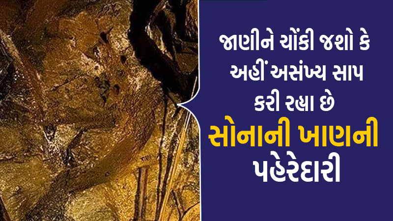 after gold uranium is expected to be available in mine of sonbhadra