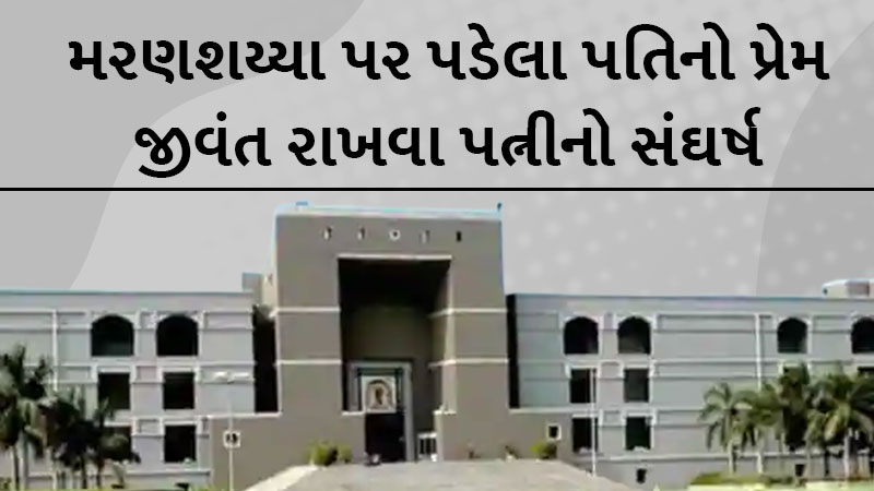 rarest of the rare case : wife reaches to gujarat high court for sperm of covid positive husband