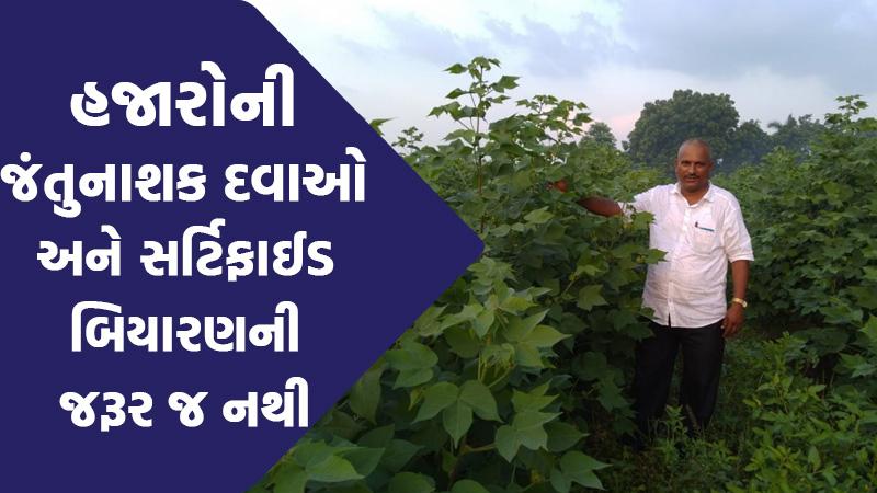 vadodara farmers invents technology for no use of fertilizer that will heli gujarat farmers
