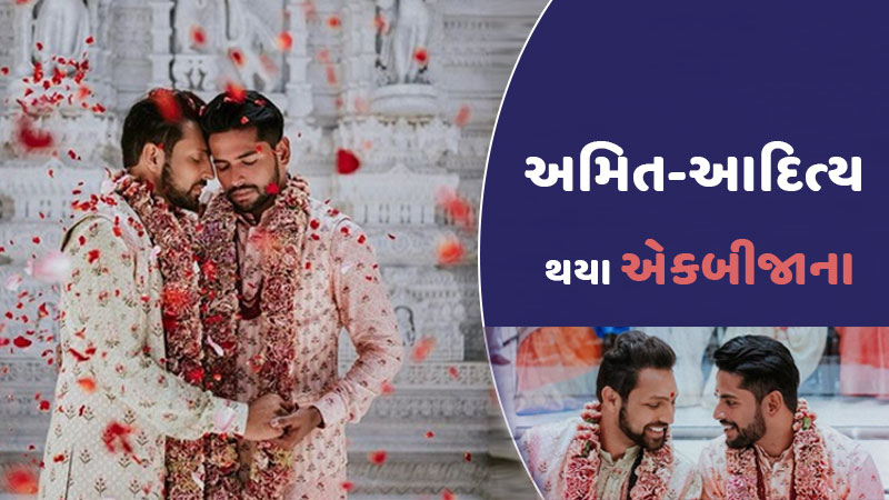 gay wedding amit shah aditya madiraju marriage
