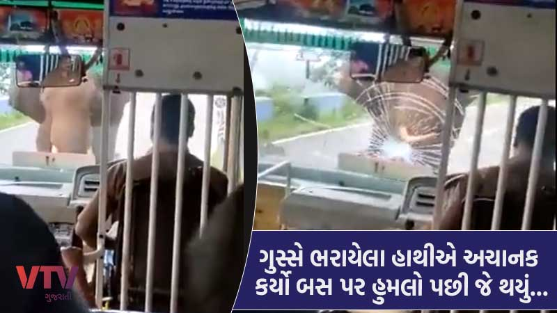 watch viral video elephant attack on bus breaks windshield people says huge respect for the driver