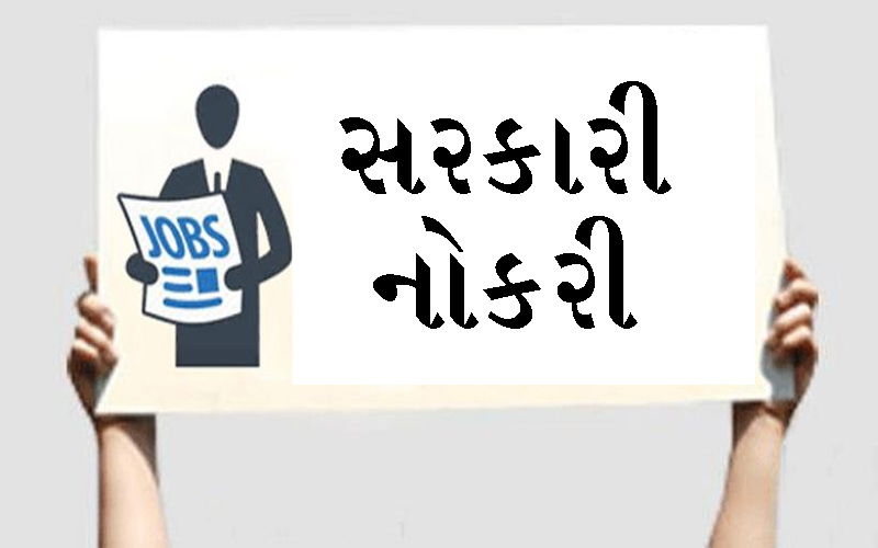 Educated unemployed Gujarat Government's important decision