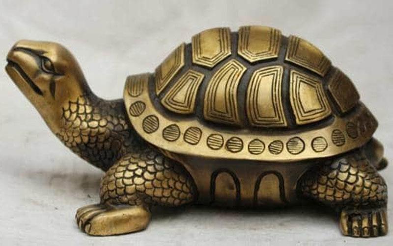Fengshui tips benifits of tortoise