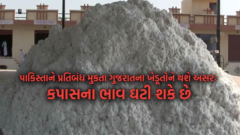 pakistan ban india affected cotton export gujarat farmers