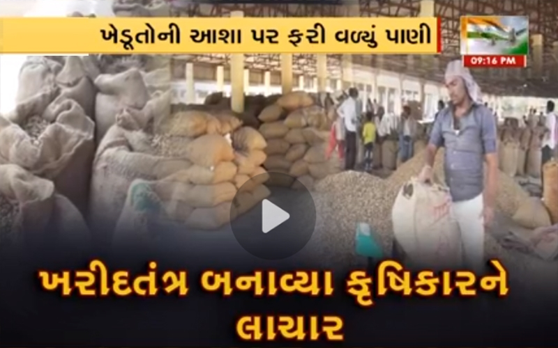 gujarat-government-announces-closure-of-groundnut-purchase-at-support-price-in-morbi