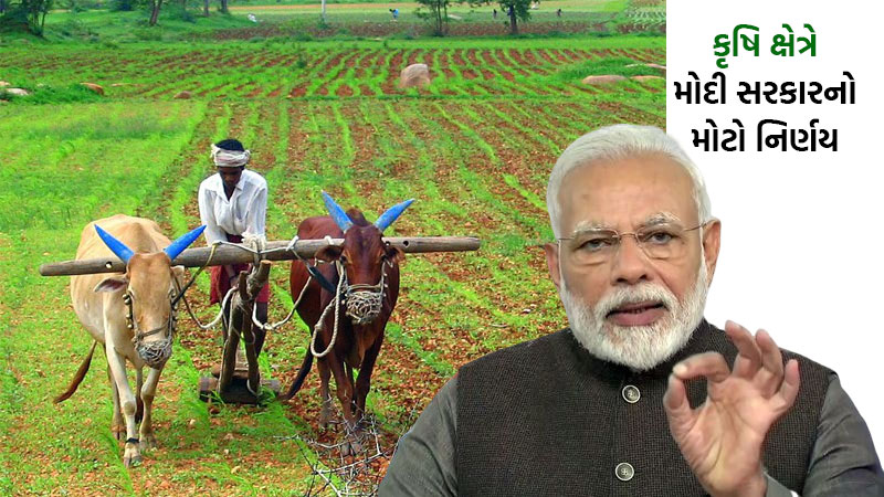 Modi government amends 65 year old essential commodity act to encourage competitive market and better wages to farmers