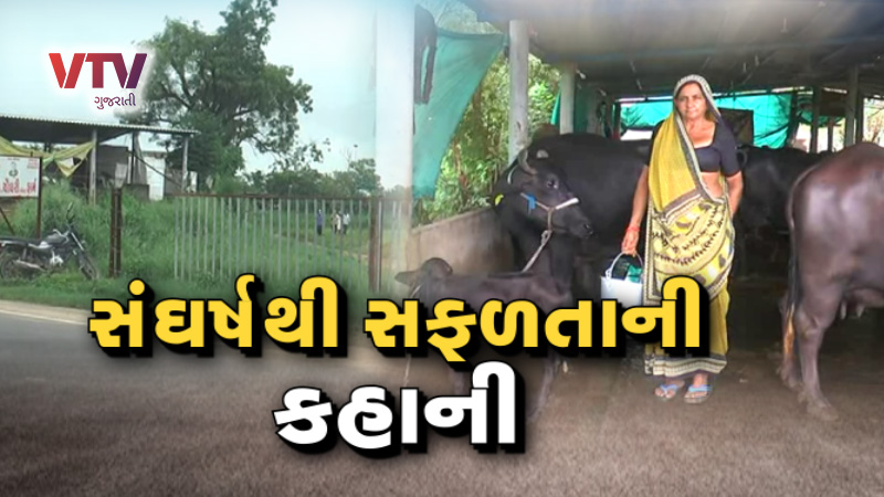 Vtv Exclusive Banaskantha woman farmer record break milk production