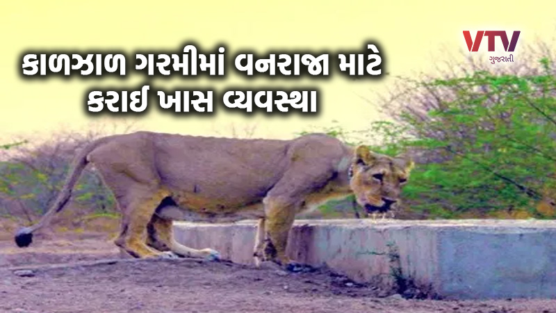 Gujarat government do water point in gir somnath for line and other animal