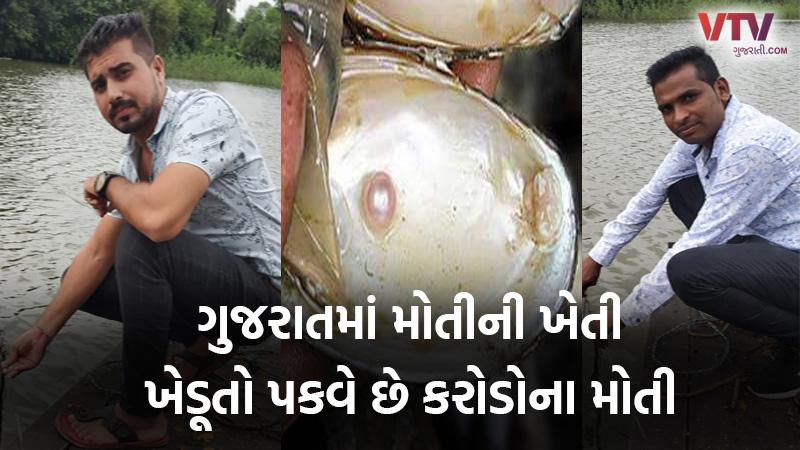 pearls farming in Gujarat Valsad anil Patel Hiren Patel success story