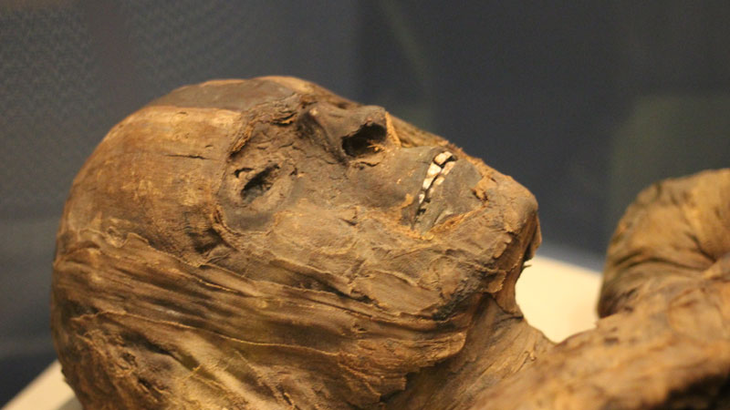 remnants of undigested food found in 2400 year old body
