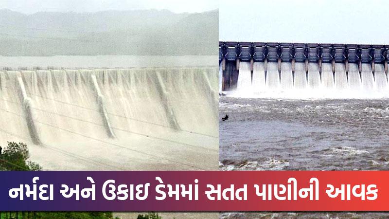 narmada dam and ukai dam water level