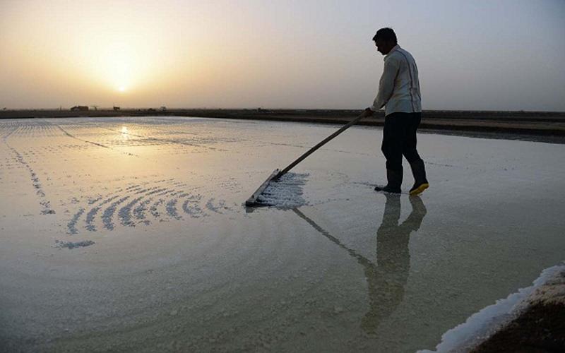 Narmada river Fishery society blood letter PM Modi CM Rupani