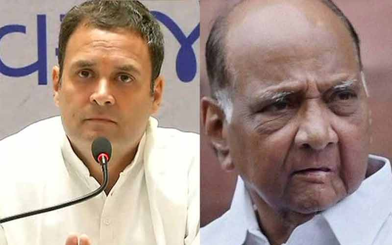 congress president rahul gandhi meets ncp chief sharad pawars residence in the capital triggering talk of a possible merger...