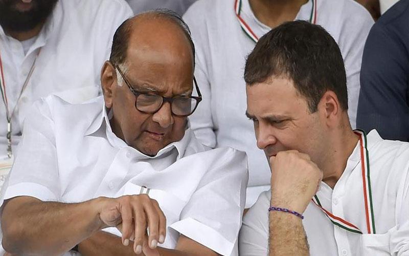 NCPનો કોંગ્રેસમાં થશે વિલય...? રાહુલ અને શરદ પવાર વચ્ચેની બેઠક બની ચર્ચાનો વિષય