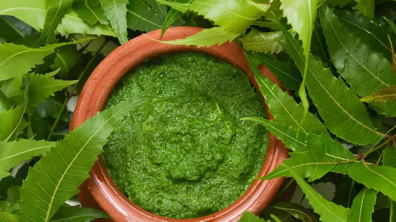 surprising health benefits of neem