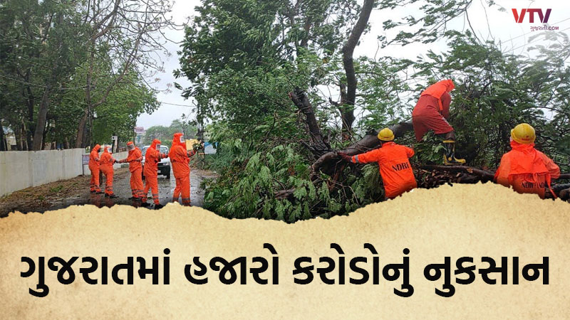 3000 crore loss in Gujarat due to Tauktae cyclone