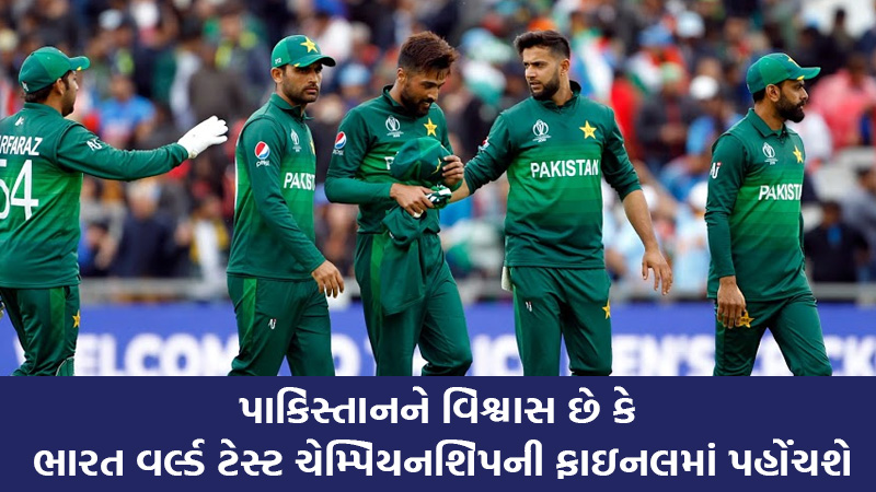pakistan is confidante that india will reach to WTC finals