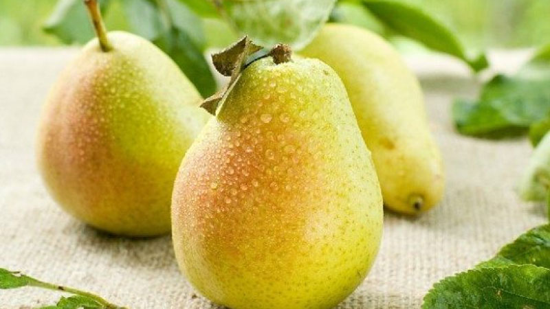 health benefits and nutrients of pear