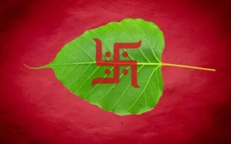 pipal-leaf-can-remedy-your-wealth-problem