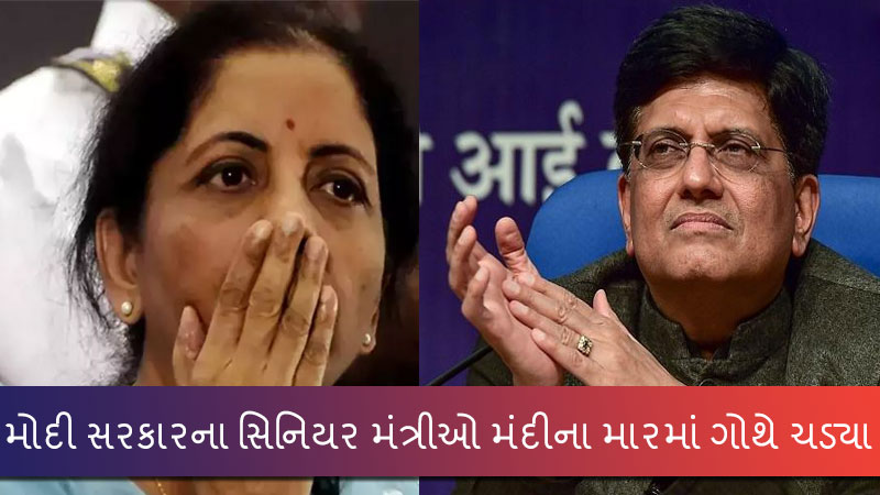 Nirmala Sitaraman And Piyush Goyal trolled for their comment on social Media
