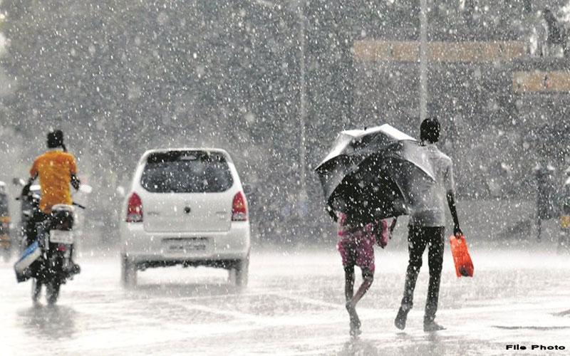 Heavy rain in 81 talukas of Gujarat