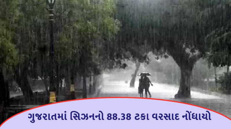 gujarat more taluka in heavy rain