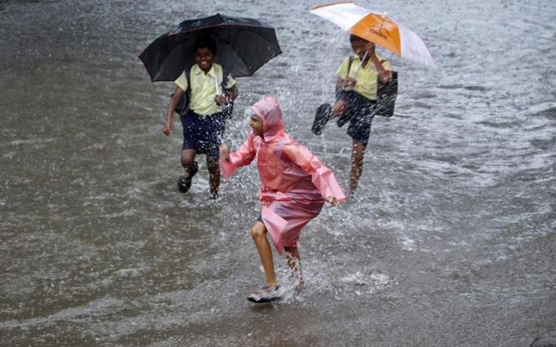વરસાદમાં શરૂ કરો આ બિઝનેસ  દરરોજ કમાશો 5-10 હજાર રૂપિયા