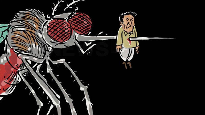 gujarat monsoon 2019 dengue 5961 case and 8 death