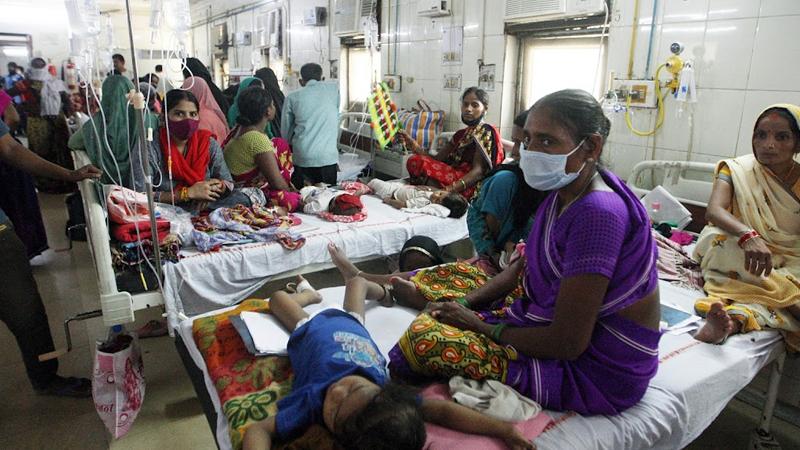 Cases of scrub typhus found in Delhi