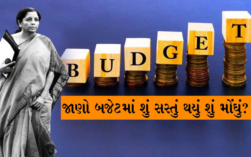 Sasta Mehnga in Budget 2019
