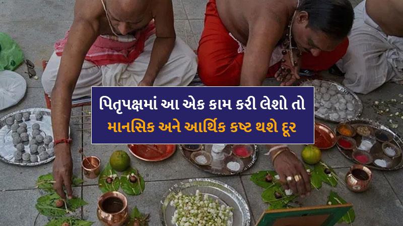 Plant these plants in pitru paksha as per hinduism