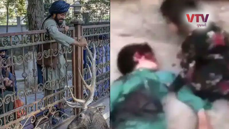 You will be shocked after seeing the horrific video of the brutality of the Taliban, the brutal murder of child and...