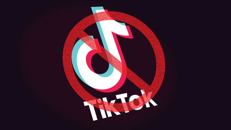 government to continue ban on chinese apps including tiktok