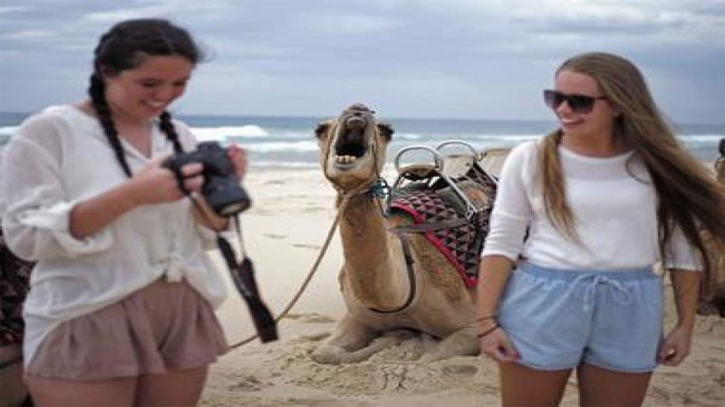 why foreign tourist can not come gujarat
