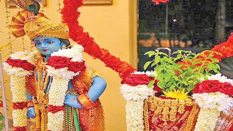 Know the Puja Vidhi Of the Tulsi Vivah on Dev Uthi Ekadashi 2019