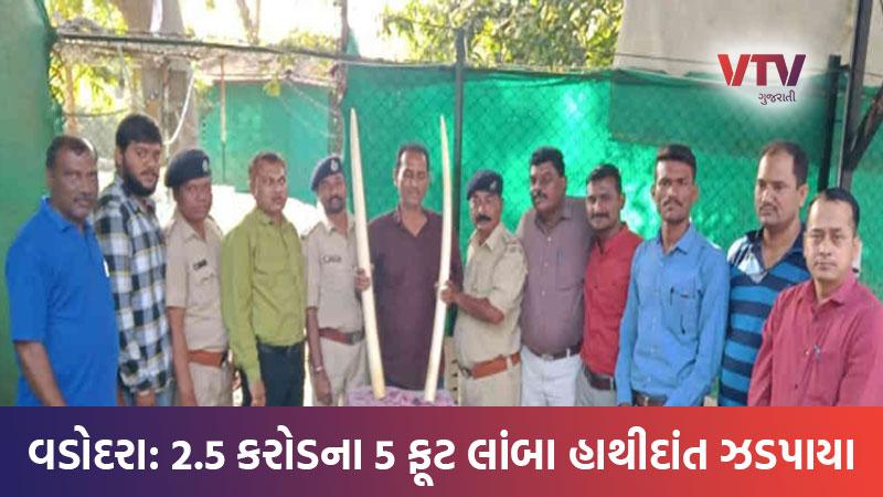 Ivory smuggling smuggler arrested in Vadodara Gujarat
