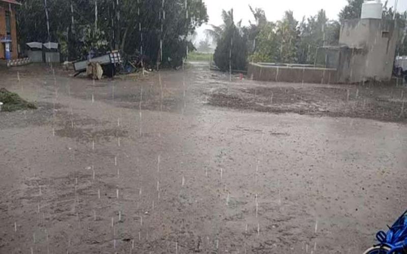 Rainfall in Bhavnagar-Amreli climate change in gujarat