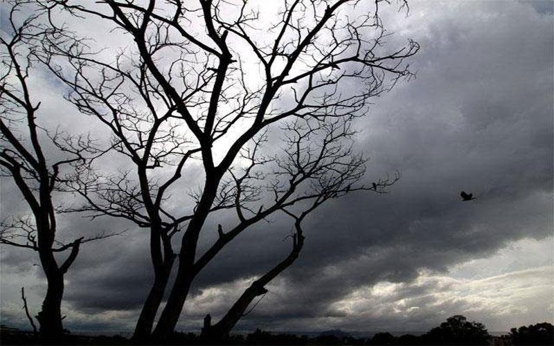 Cyclone Vayu monsoon pace slowed down