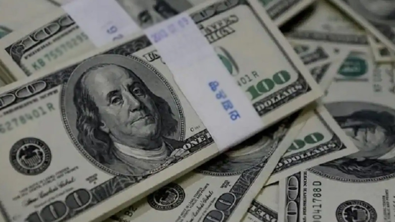 Foreign currency reserves increased record india