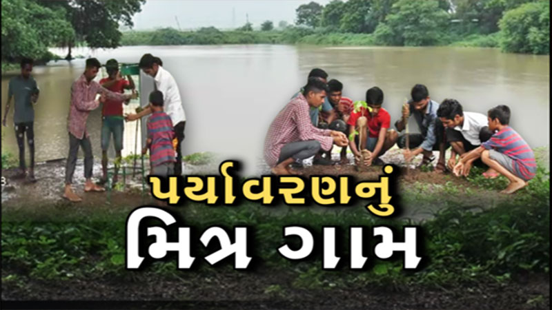 Bharuch: sow 3 trees at home and get one years tax exemption