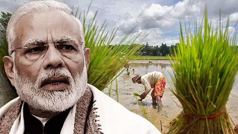 narendra modi cabinet decision