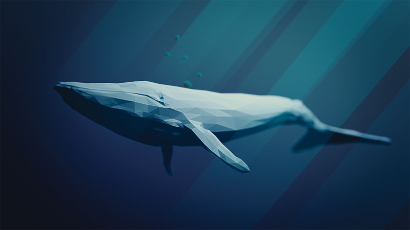 A blue whales heart beats just twice a minute