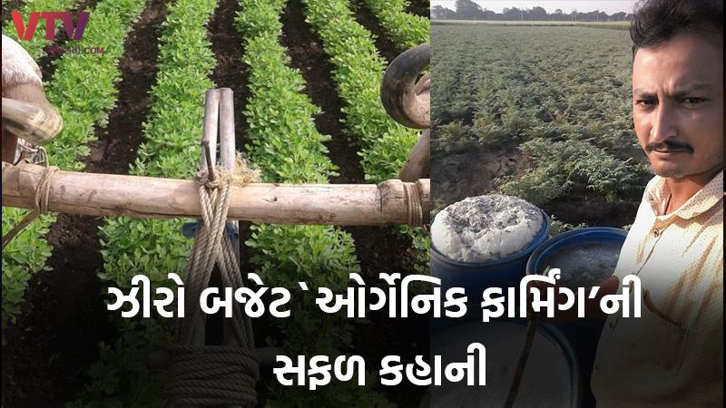 zero budget organic farming in Gir somnath farmer success story