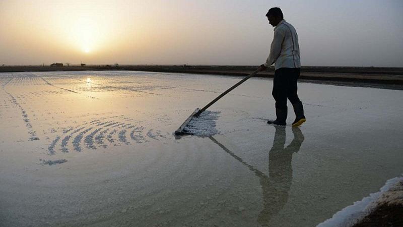 નર્મદા નદીને બચાવવા માછીમાર સમાજે PM મોદી અને CM રૂપાણીને લોહીથી લખ્યો પત્ર