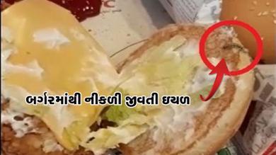 KFC રેસ્ટોરન્ટમાં બર્ગરમાંથી નીકળી આ ચીજ, જોનારા થઈ ગયા દંગ